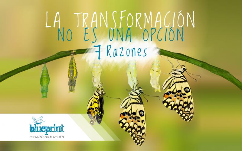 La Transformación no es una opción: 7 razones