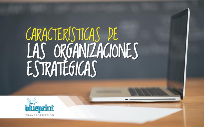 Características de las organizaciones Estratégicas