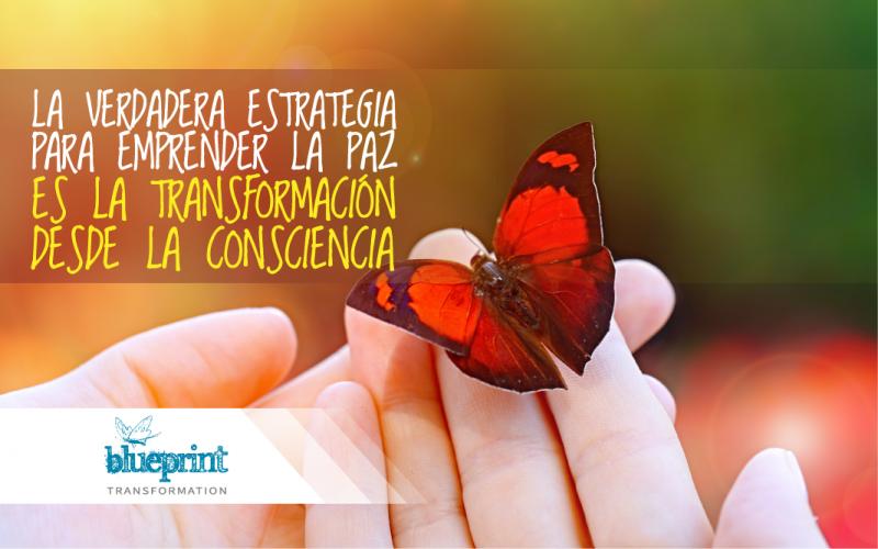 Esta es la verdadera estrategia para emprender la paz es la transformación desde la consciencia